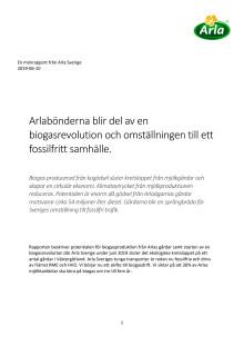 Rapport - biogas