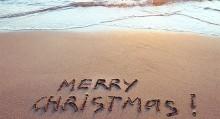 AIFS unterm Weihnachtsbaum