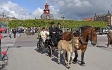 Kärleksfulla Lidköping - ett romantiskt handelsevenemang