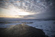 Polarforskningssekretariatet ska utreda om ett nytt isbrytande forskningsfartyg