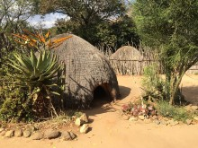 Rambling in Swaziland -Jenny Bowen