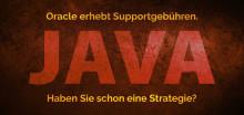 Assessment von ARS zur Roadmap für den weiteren Weg mit Java