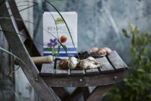 Plantera vårens glädjespridare
