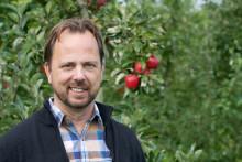 Utan bin inga äpplen  – Kiviks Musteri satsar på pollinatörerna