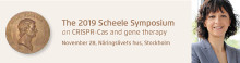 The 2019 Scheele Symposium: CRISPR-Cas and gene therapy