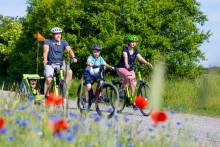 E-Bikes im Elbe-Elster-Land
