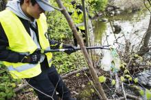 Idrottsungdomar städar i Haninge lördagen den 26 augusti