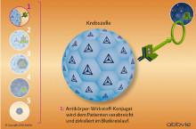 Antikörper-Wirkstoff-Konjugate: Präzise Vernichtung von Krebszellen