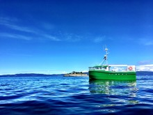 Norge i front med verdens første elektriske fiskesjark