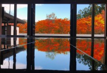 The natural beauty of fall destinations in Tatebayashi & Ashikaga area
