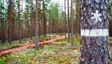 Invånarna i Hammarö har närmast till skyddad natur i Värmland