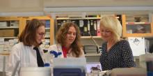 Suomalaistutkijoilta uutta tietoa lasten sydänlihassairauksien syistä