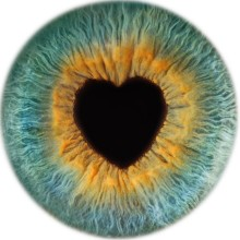 Love need not be blind this Valentine's, as national optician launches free eye test for all offer