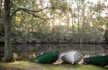 Naturnära livsstil och ploggning Sveriges bidrag på världskongress för naturturism