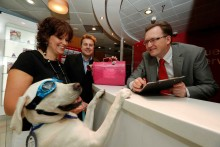 Pampered pooches travel in style with new Stena Line partnerships