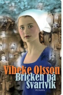 Pressmeddelande från Libris förlag: Ny roman av Vibeke Olsson