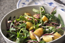 Månadens recept juni - Krämig färskpotatissallad