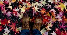 Hitta motivationen i höst – 5 tips som kickstartar din karriär