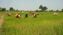 Grant Thornton hjälper indisk by ta sig ur fattigdom genom  kvinnligt entreprenörskap