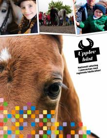 Tidning: Upplev Häst i text och bild från året som gått