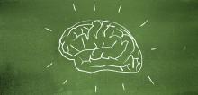 Seminarium i Almedalen 3 juli: Rensa skolan från hjärnmyter