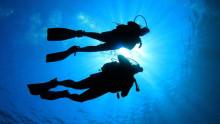 Nya projekt om nät för akustiska undervattenssensorer behandlar hantering och anpassning till olika applikationer