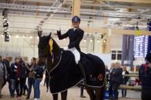 Dags för 4-åriga dressyrhästarna att kvala till Elmia Scandinavian Horse Show!