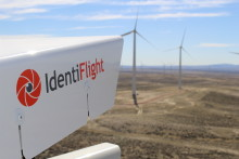 Eagles Fly Safely Near Wind Turbines thanks to IdentiFlight