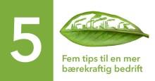 Fem tips til en mer bærekraftig bedrift