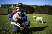 Frokostseminar: Hvordan går det egentlig i norsk landbruk