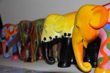 Creative painting day raises money for Elephant Parade