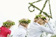 Hitta blommor och gärdesgårdar till midsommar