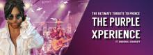 Prince Tribute - THE PURPLE XPERIENCE,  på Sverigeturné för första gången!