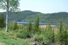Statskog  og Trysil samarbeider om utviklingsprosjekter