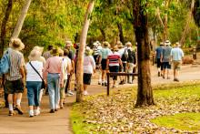 Ensamresenärer väljer gruppresor – ökar 35 procent