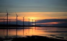 """""""Den höga skatten på el är inte försvarbar"""""""