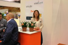 Dutch exhibitors test the Swedish market