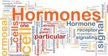 En hormonstinn afton – vårseminarium 27:e april i Stockholm