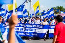"""""""Det føles stadig uvirkeligt"""": Miljøorganisationer tvangslukket og erklæret for terrorister af Nicaraguas regering"""