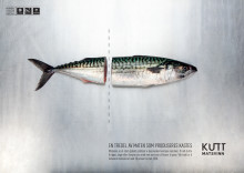Nordic Choice Hotels høyner innsatsen i kampen mot matsvinn
