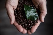 Hur länge håller kaffebönor?