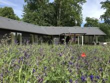 Køb sommerhus for klimaets, samfundets og din egen skyld