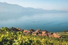 Nur ein Mal pro Generation: Das Winzerfest am Genfersee