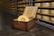 Norrmejerier bygger ny anläggning för ostförädling
