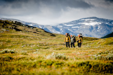 Detta googlar utländska turister på om Sverige