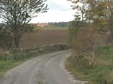 Länsstyrelsen kontrollerar biotopskyddsområden i odlingslandskapet