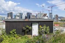 Oslo är Europas miljöhuvudstad 2019