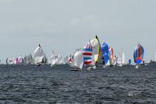 COWI hyllar seglarna i Sveriges största segeltävling