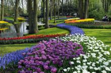 Europas största trädgårdsundersökning visar hur drömträdgården ser ut