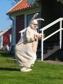 Populärt med påsk på slottet